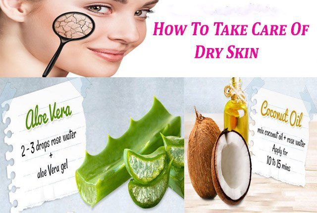Home Remedies For Dry Skin Best Tips & Guides