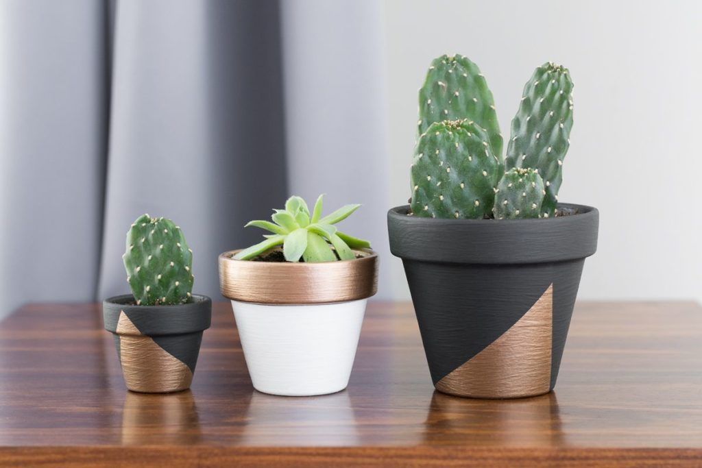 Painting Clay Pots Ideas