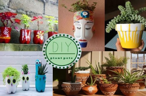 DIY Pots For Plants Best Ideas For Decorating Your Flower Pots At Home