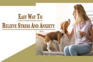 How to Reduce Stress and Tension Best Tips And Guide